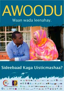 16 days Somali poster